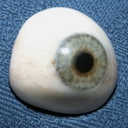 A prosthetic right eye, made from acrylic